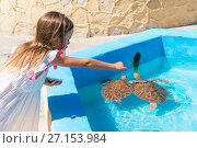 Купить «Adorable little girl feeds turtles in the natural reserve», фото № 27153984, снято 10 апреля 2017 г. (c) Дмитрий Травников / Фотобанк Лори