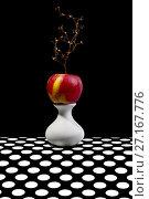 Купить «Натюрморт с яблоком на белой вазе», фото № 27167776, снято 22 октября 2017 г. (c) V.Ivantsov / Фотобанк Лори