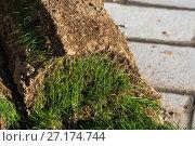 Купить «The rolled lawn folded in stacks on street», фото № 27174744, снято 2 ноября 2017 г. (c) Володина Ольга / Фотобанк Лори