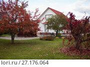 Купить «Дом на осеннем дачном участке», фото № 27176064, снято 8 октября 2017 г. (c) Victoria Demidova / Фотобанк Лори