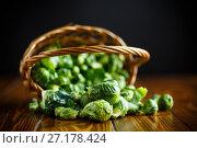 Купить «closeup of brussels sprouts», фото № 27178424, снято 3 ноября 2017 г. (c) Peredniankina / Фотобанк Лори