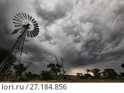 Купить «Windmill under a gathering thunderstorm in the Kalahari Desert, South Africa. These traditional windmills are still used to raise groundwater for use in the home and to fill animal troughs. May 2011», фото № 27184856, снято 14 декабря 2017 г. (c) Nature Picture Library / Фотобанк Лори