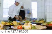 Купить «Male chef keeping appetizer plate ready on the order station 4k», видеоролик № 27190500, снято 6 декабря 2019 г. (c) Wavebreak Media / Фотобанк Лори