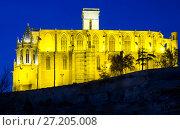 Купить «Basilica of Santa Maria de la Seu in Manresa», фото № 27205008, снято 18 января 2020 г. (c) Яков Филимонов / Фотобанк Лори