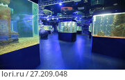 Купить «Oceanarium, a lot of aquariums», видеоролик № 27209048, снято 5 октября 2016 г. (c) Илья Шаматура / Фотобанк Лори