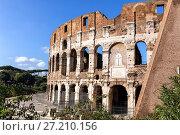 Купить «The Coliseum in Rome», иллюстрация № 27210156 (c) Евгений Ткачёв / Фотобанк Лори