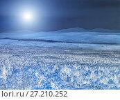 Купить «The bright moon illuminates the mysterious night forest», фото № 27210252, снято 11 июня 2011 г. (c) Евгений Ткачёв / Фотобанк Лори