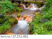 Купить «Каскад маленьких водопадов на реке, вытекающей из Мшенских родников», фото № 27212492, снято 10 августа 2016 г. (c) Pukhov K / Фотобанк Лори