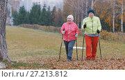 Купить «Two happy elderly woman in autumn park have nordic walking among autumn cold park», фото № 27213812, снято 24 июня 2019 г. (c) Константин Шишкин / Фотобанк Лори
