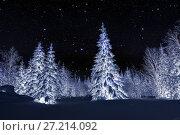 Купить «Winter night landscape. Spruce forest in winter», фото № 27214092, снято 5 января 2016 г. (c) Евгений Ткачёв / Фотобанк Лори