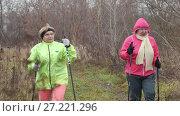 Купить «Two elderly woman in autumn park have modern healthy training - nordic walking», видеоролик № 27221296, снято 21 ноября 2017 г. (c) Константин Шишкин / Фотобанк Лори