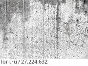 Купить «Old grungy concrete wall with wet stains», фото № 27224632, снято 14 ноября 2017 г. (c) EugeneSergeev / Фотобанк Лори