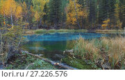 Купить «Panorama of Blue Geyser lake in Altai mountains in rainy day», видеоролик № 27226576, снято 19 октября 2017 г. (c) Serg Zastavkin / Фотобанк Лори