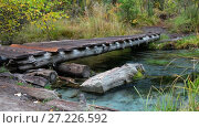 Купить «Small wooden boardwalk bridge over forest creek near Blue Geyser lake in Altai mountains in rainy day», видеоролик № 27226592, снято 21 октября 2017 г. (c) Serg Zastavkin / Фотобанк Лори
