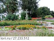 Крест в ботаническом саду Сухуми. Стоковое фото, фотограф Гузель Гарипова / Фотобанк Лори