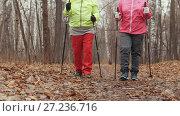 Купить «Nordic walking for elderly women outdoor - two senior ladies have training outdoor», видеоролик № 27236716, снято 25 мая 2019 г. (c) Константин Шишкин / Фотобанк Лори