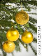 Купить «Christmas decorations, golden balls hanging on the Christmas tree», фото № 27237124, снято 25 ноября 2017 г. (c) Юлия Бабкина / Фотобанк Лори