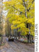 Купить «Эко парк Пехорка», фото № 27238476, снято 13 октября 2017 г. (c) Сергей Паникратов / Фотобанк Лори