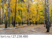 Купить «Эко парк Пехорка», фото № 27238480, снято 13 октября 2017 г. (c) Сергей Паникратов / Фотобанк Лори