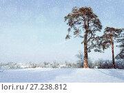 Купить «Winter landscape. Frosty pine trees in the winter forest and village on the background in snowy winter day», фото № 27238812, снято 12 декабря 2017 г. (c) Зезелина Марина / Фотобанк Лори