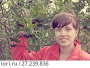 Купить «woman picking chokeberry», фото № 27239836, снято 14 сентября 2011 г. (c) Яков Филимонов / Фотобанк Лори