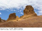 Купить «Arid landscape of Deserta Grande, Madeira, Portugal, 2013.», фото № 27251616, снято 16 июля 2018 г. (c) Nature Picture Library / Фотобанк Лори