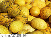 Купить «Melons», фото № 27258164, снято 12 октября 2017 г. (c) Stockphoto / Фотобанк Лори