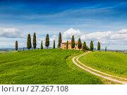 Купить «Сельский пейзаж Тосканы, Италия, San Quirico d'Orcia», фото № 27267108, снято 12 мая 2014 г. (c) Наталья Волкова / Фотобанк Лори