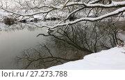 Купить «Заснеженные деревья склонились над рекой», видеоролик № 27273788, снято 6 декабря 2017 г. (c) Яна Королёва / Фотобанк Лори