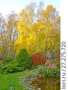 Ландшафтный дизайн в осеннем парке. Стоковое фото, фотограф Ирина Борсученко / Фотобанк Лори
