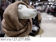 Купить «Dummy of dog dressed in snood», фото № 27277856, снято 9 декабря 2017 г. (c) Stockphoto / Фотобанк Лори