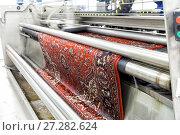 Купить «Автоматическая химчистка ковров», фото № 27282624, снято 19 июня 2017 г. (c) Евгений Ткачёв / Фотобанк Лори