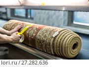 Купить «Automatic washing and cleaning of carpets. Industrial line for washing carpets», фото № 27282636, снято 19 июня 2017 г. (c) Евгений Ткачёв / Фотобанк Лори