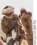 Купить «Ouled Rachid tribesman riding a domestic camel, Kashkasha village near Zakouma National Park, Chad, 2010.», фото № 27284372, снято 21 января 2018 г. (c) Nature Picture Library / Фотобанк Лори