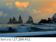 Купить «Reynisdrangar basalt sea stacks with snow, Vik, Iceland, February 2017.», фото № 27284412, снято 20 апреля 2018 г. (c) Nature Picture Library / Фотобанк Лори