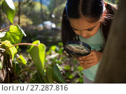Little girl exploring nature through magnifying glass on a sunny day. Стоковое фото, агентство Wavebreak Media / Фотобанк Лори