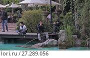 Купить «City park Shanghai», видеоролик № 27289056, снято 13 декабря 2017 г. (c) Балдина Алиса / Фотобанк Лори