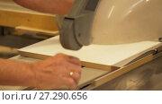 Купить «carpenter with panel saw and fibreboard at factory», видеоролик № 27290656, снято 17 ноября 2017 г. (c) Syda Productions / Фотобанк Лори
