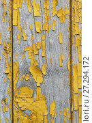 Купить «A vertical fragment of an old wooden surface with the remnants of the leafless paint ochre. Peeling paint reveals the texture of the wood», фото № 27294172, снято 25 июля 2017 г. (c) Наталья Гармашева / Фотобанк Лори