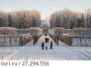 People walk in the alleys of Catherine Park in a winter sunny day (2014 год). Редакционное фото, фотограф Юлия Бабкина / Фотобанк Лори