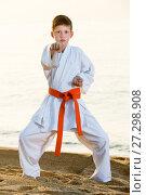 Купить «Boy doing karate poses», фото № 27298908, снято 12 июля 2017 г. (c) Яков Филимонов / Фотобанк Лори