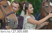 Купить «Bride and groom outdoors in a green park among horses. A wedding couple stroking animals. Stroll. Wedding day. Happy together.», видеоролик № 27305680, снято 27 октября 2017 г. (c) Mikhail Davidovich / Фотобанк Лори