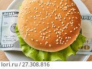 Купить «Financial hamburger. View from above», фото № 27308816, снято 17 декабря 2017 г. (c) Георгий Дзюра / Фотобанк Лори