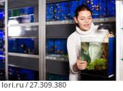 Купить «Girl looking at young fishes in aquarium», фото № 27309380, снято 17 февраля 2017 г. (c) Яков Филимонов / Фотобанк Лори