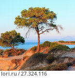 Sunset Aegean sea coast (Chalkidiki, Greece). Стоковое фото, фотограф Юрий Брыкайло / Фотобанк Лори