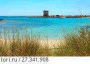 Купить «Torre Chianca beach on Salento sea coast, Italy», фото № 27341908, снято 8 июня 2017 г. (c) Юрий Брыкайло / Фотобанк Лори