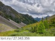 Зеленый склон горной тундры в сибирском высокогорье. Стоковое фото, фотограф Виктор Никитин / Фотобанк Лори