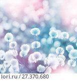 Купить «Пейзаж с арктическим хлопком», фото № 27370680, снято 16 ноября 2018 г. (c) Икан Леонид / Фотобанк Лори