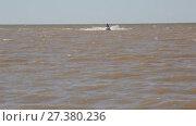 Купить «Катание на гидроцикле на Азовском море», видеоролик № 27380236, снято 4 июня 2017 г. (c) Олег Хархан / Фотобанк Лори