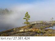 Купить «Редкий погодный феномен - в солнечный день облако лежит на поверхности озера. Ладожские шхеры, Карелия. Начало июня.», фото № 27381424, снято 6 июня 2017 г. (c) Сергей Рыбин / Фотобанк Лори